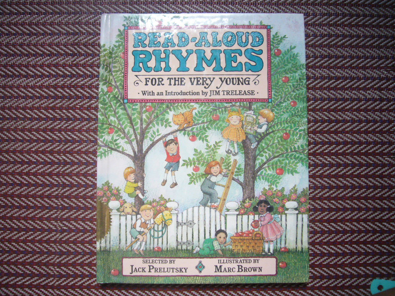 Read Along Rhymes For the Very Young