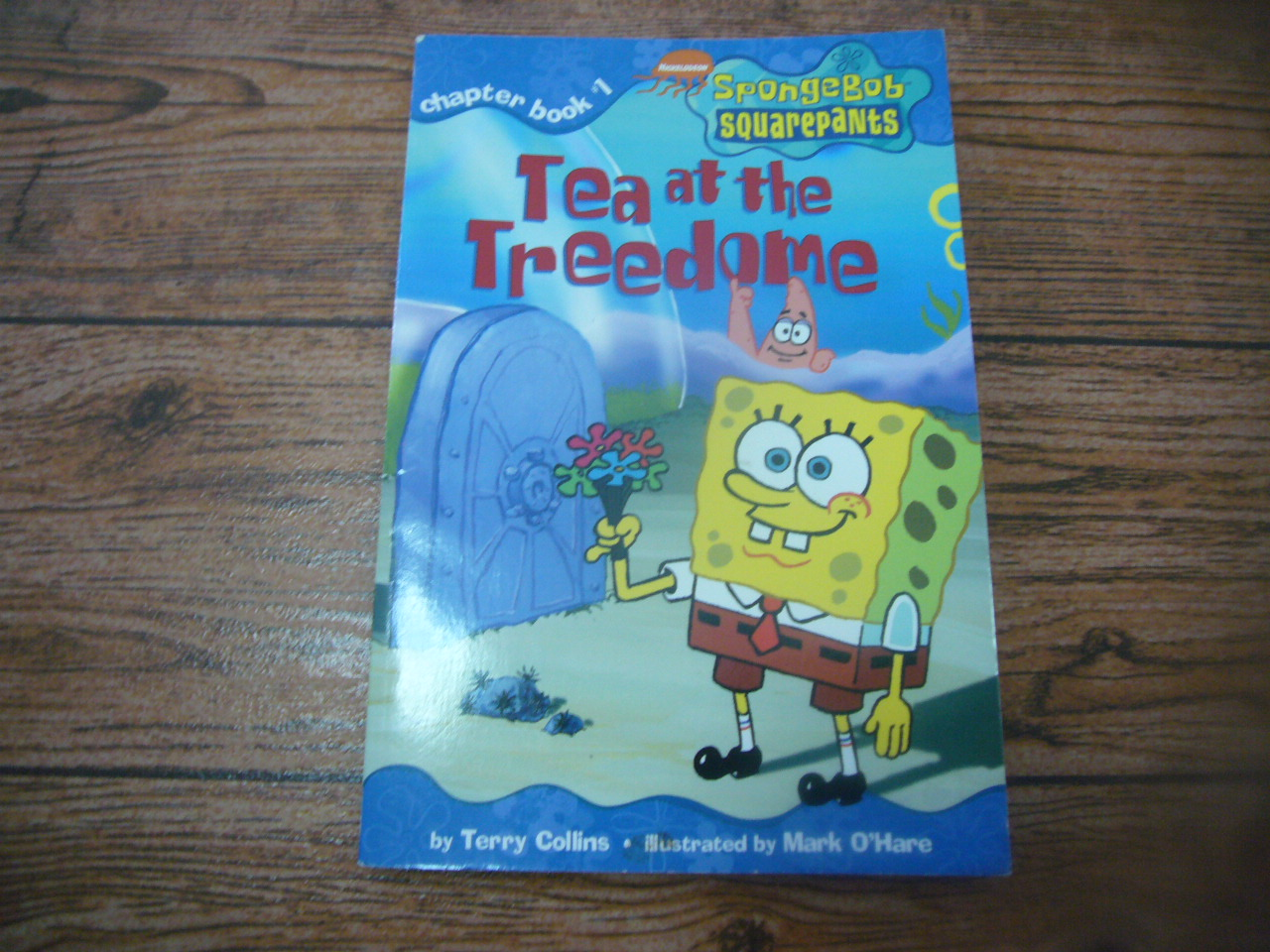 Tea at the Treedome (SpongeBob Chapter Book 1)