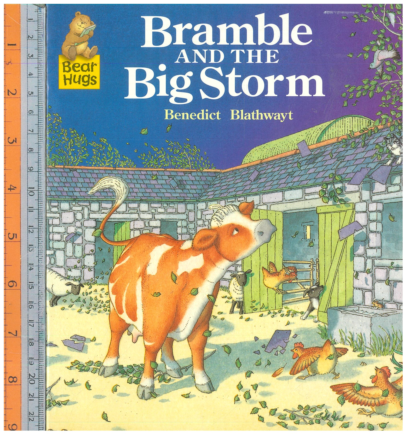 Bramble big storm
