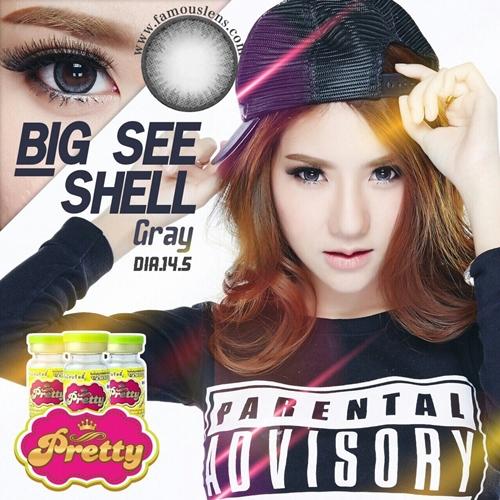 Seeshell คอนแทคเลนส์ที่ Leah Dizon ชอบที่สุด Vassen Korea Contact Lens ธรรมชาติ สีเทา ขนาดเล็ก พอดีตา เท่าตาจริง ไซส์มินิ Mini Size Contact Lens Famouslens
