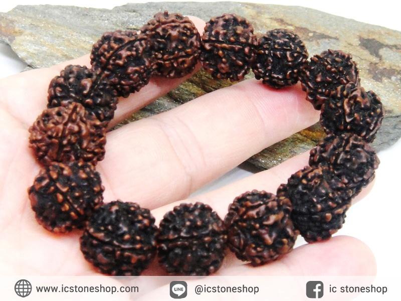 สร้อยข้อมือ เมล็ดรุทรักษะ เมล็ดน้ำตาพระศิวะ (15-17mm.)