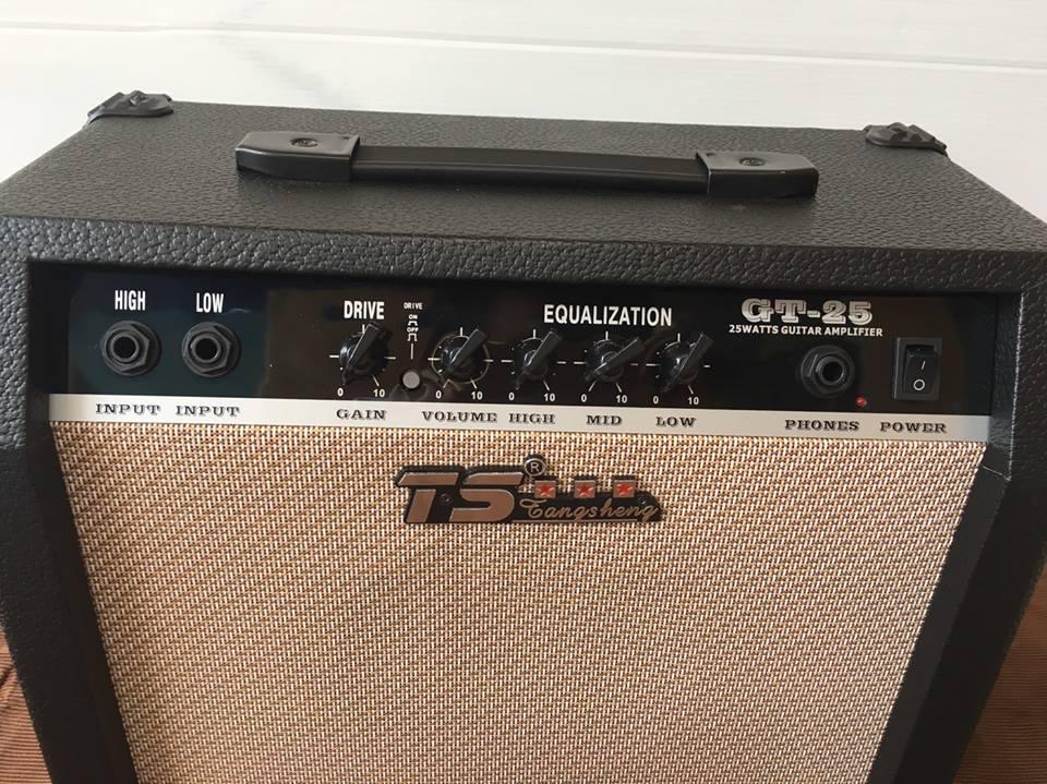 TS GT25
