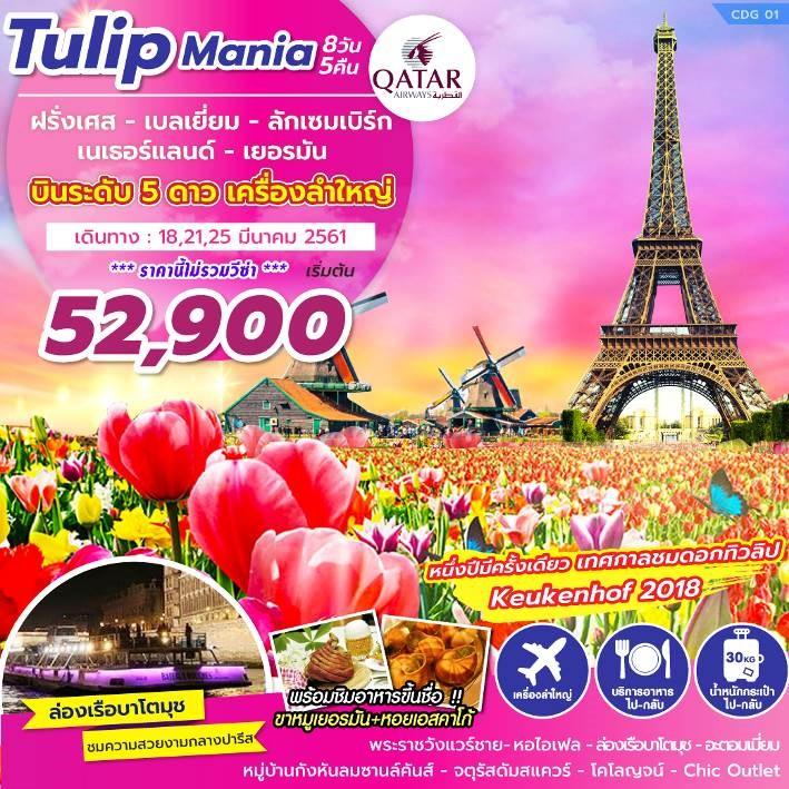 ZT CDG01 ทัวร์ ยุโรป Tulip Mania ฝรั่งเศส เบลเยี่ยม ลักเซมเบิร์ก เนเธอร์แลนด์ เยอรมัน8 วัน 5 คืน บิน QR