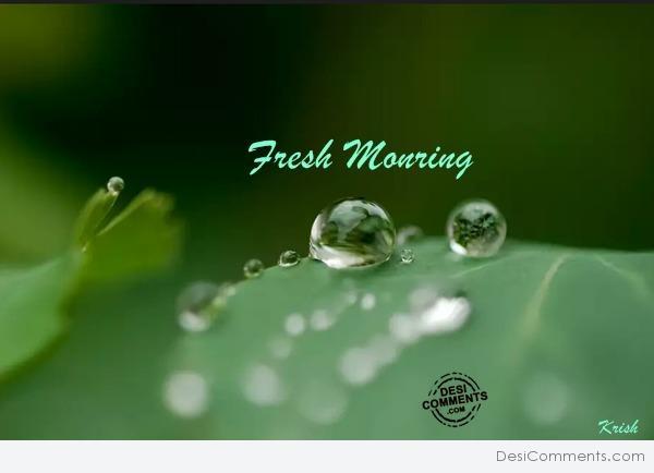 หัวน้ำหอม กลิ่น double (ดับเบิ้ล) Fresh Morning