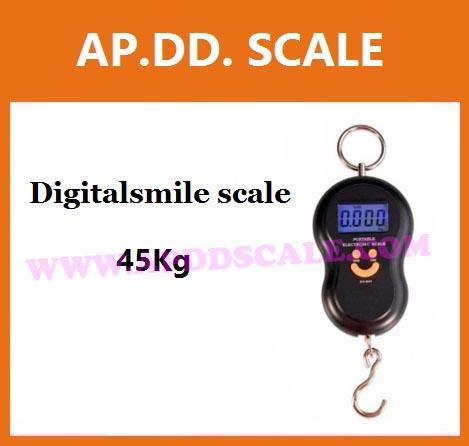 เครื่องชั่งดิจิตอล เครื่องชั่งแขวน45kg เครื่องชั่งแขวนดิจิตอล45กิโล เครื่องชั่งแบบแขวน45kg ละเอียด10g(พร้อมกล่อง) ยี่ห้อ Digitalsmile scale 45kg/10g