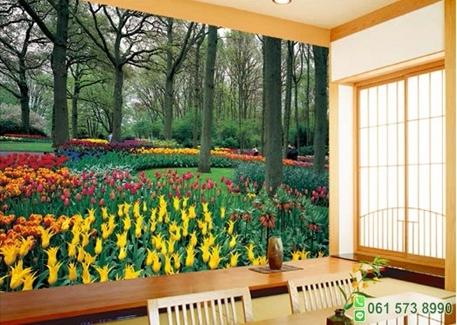 วอลเปเปอร์ภาพวิว Tulip Garden (สวนดอกไม้ทิวลิป)