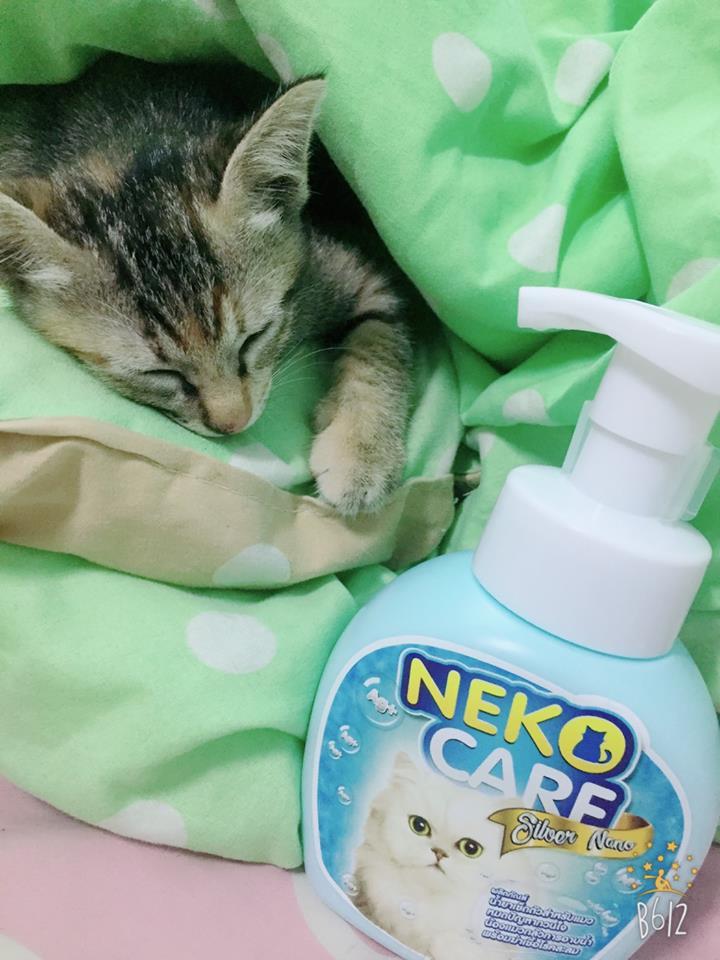 แชมพูแมว Neko Care