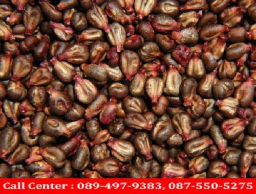 top life grape seed ราคา
